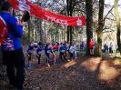 TSV Waldlauf 2019 - 15